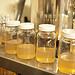2013/05/26 - Carnivorous Plant Tissue Culturing